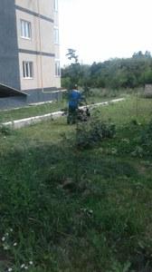 Покос травы и уборка территории
